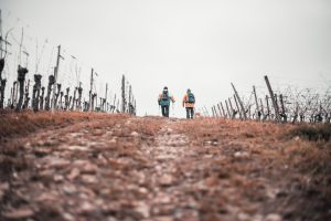 Trekking i hiking - jakie są różnice?